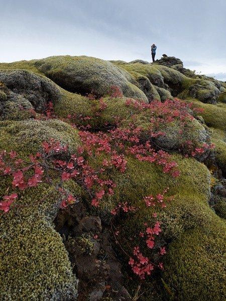 Iceland 2018 image 0 15