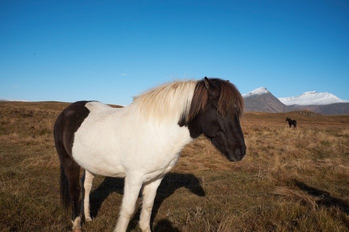 Iceland 2018 image 0 21