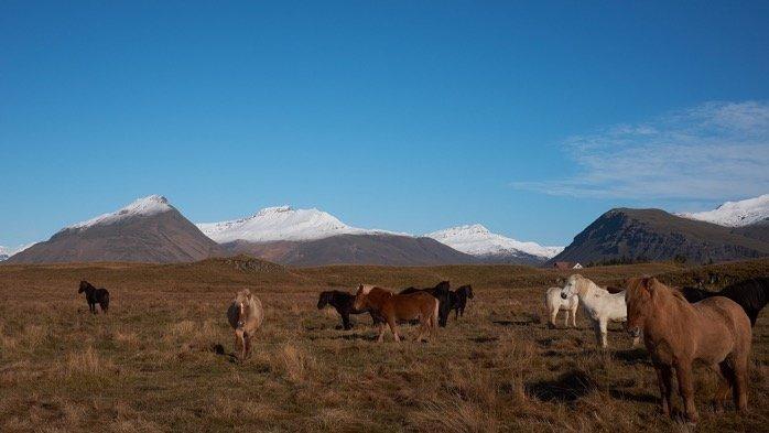 Iceland 2018 image 0 22